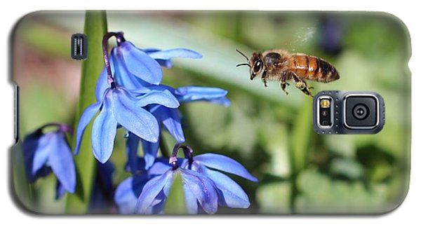 Honeybee In Flight Galaxy S5 Case by Lucinda VanVleck