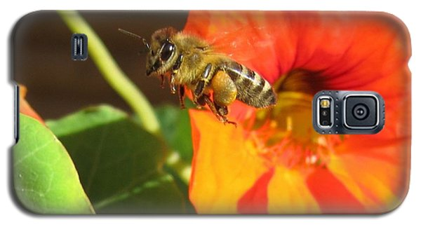 Honeybee Leaving Nasturtium With A Full Pollen Basket Galaxy S5 Case by Lucinda VanVleck