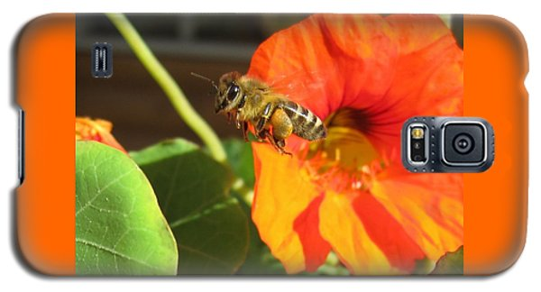 Honeybee Leaving Nasturtium With A Full Pollen Basket Galaxy S5 Case