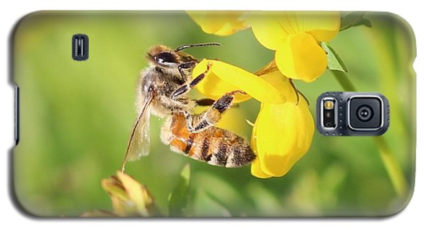 honeybee on Birdsfool Trefoil Galaxy S5 Case by Lucinda VanVleck