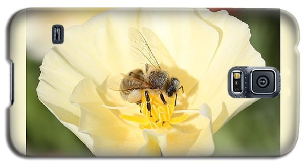 Honeybee On Cream Poppy Galaxy S5 Case by Lucinda VanVleck