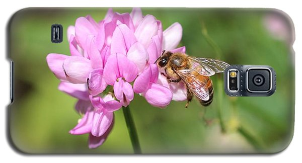 Honeybee On Crown Vetch Galaxy S5 Case