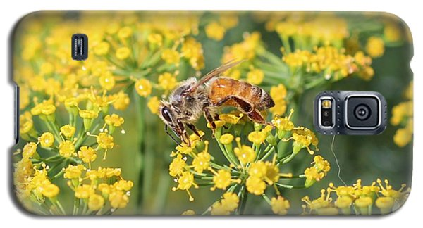 Honeybee On Dill Galaxy S5 Case by Lucinda VanVleck