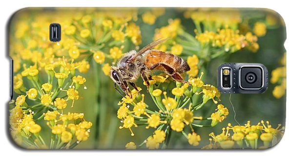 Honeybee On Dill Galaxy S5 Case