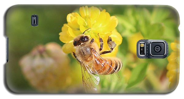 Honeybee On Hop Clover Galaxy S5 Case by Lucinda VanVleck