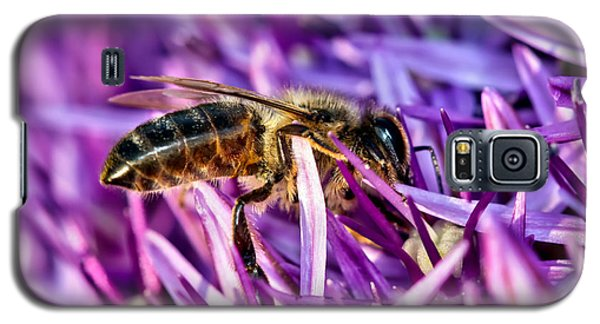 Honeybee Romping In The Garlic Galaxy S5 Case