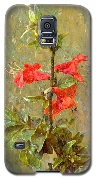 Galaxy S5 Case featuring the photograph Honeysuckle- Classical by Darla Wood