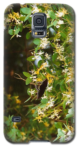 Galaxy S5 Case featuring the photograph Honeysuckle And Butterfly  by Jesse Ciazza