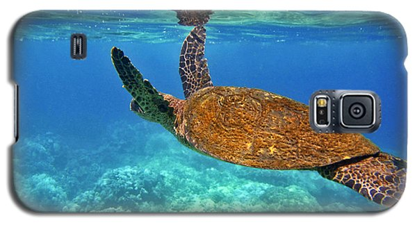 Honu Wings Up Galaxy S5 Case