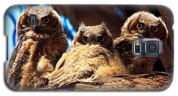 Hoo Are You Galaxy S5 Case