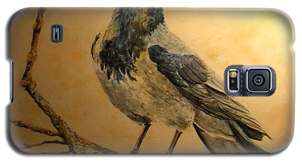 Berlin Galaxy S5 Case - Hooded Crow by Juan  Bosco