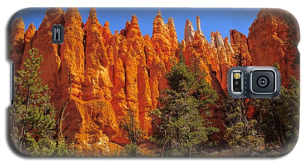 Hoodoos Along The Trail Galaxy S5 Case by Robert Bales