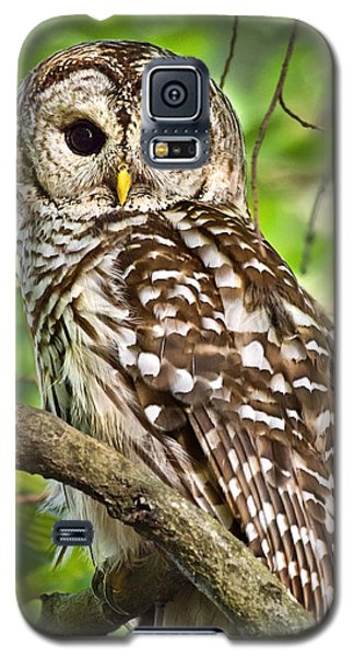 Galaxy S5 Case featuring the photograph Hoot Owl by Christina Rollo