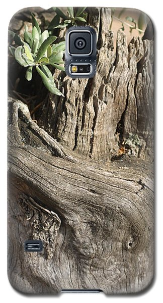 Galaxy S5 Case featuring the photograph Hope by Rosemary Colyer