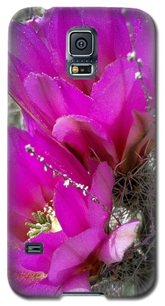 Galaxy S5 Case featuring the photograph Hope by Suzanne Silvir