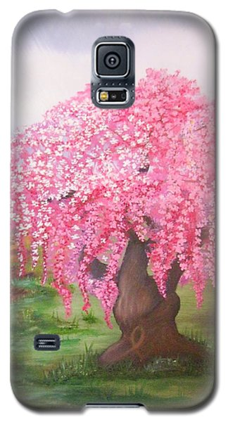 Hope Galaxy S5 Case by Valorie Cross