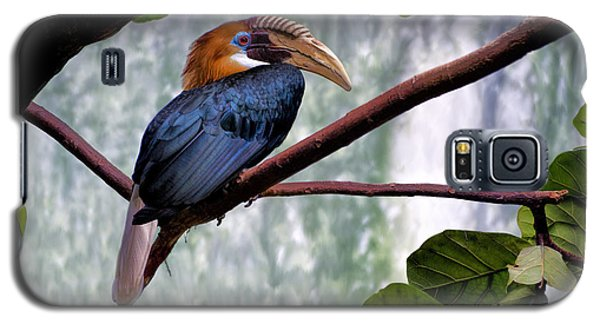 Galaxy S5 Case featuring the photograph Hornbill In Paradise by Adam Olsen
