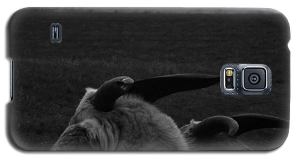 Horns And Hills Galaxy S5 Case