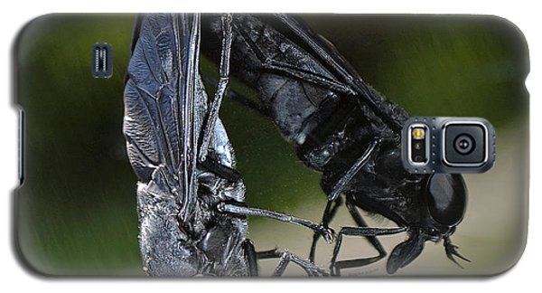 Galaxy S5 Case featuring the photograph Horse Fly by DigiArt Diaries by Vicky B Fuller