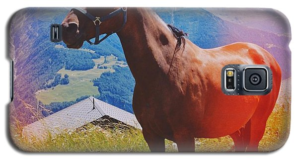 Horse In The Alps Galaxy S5 Case by Matthias Hauser