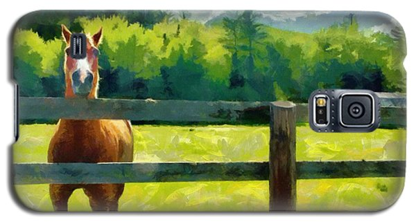Galaxy S5 Case featuring the painting Horse In The Field by Jeff Kolker