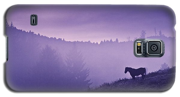 Horse In The Mist Galaxy S5 Case by Yuri Santin