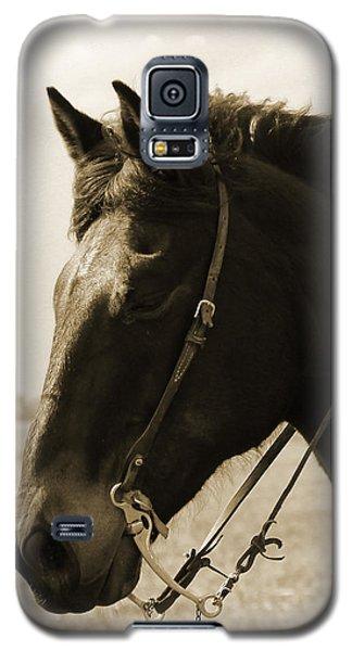 Keri Engelhaupt Galaxy S5 Cases