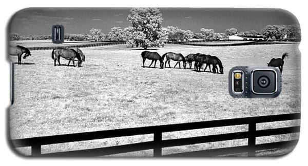 Galaxy S5 Case featuring the photograph Horse Pasture Infrared by Martin Konopacki
