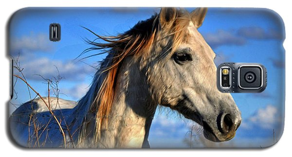 Galaxy S5 Case featuring the photograph Horse by Savannah Gibbs