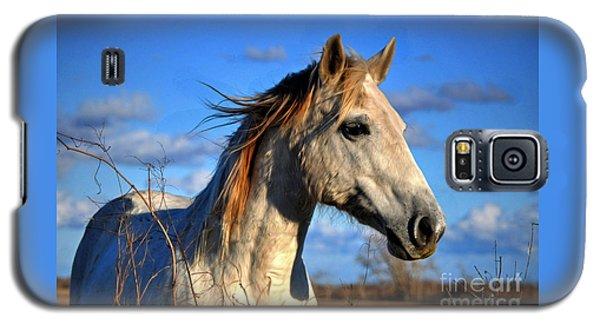 Horse Galaxy S5 Case by Savannah Gibbs