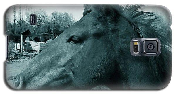 Horse Sense Galaxy S5 Case