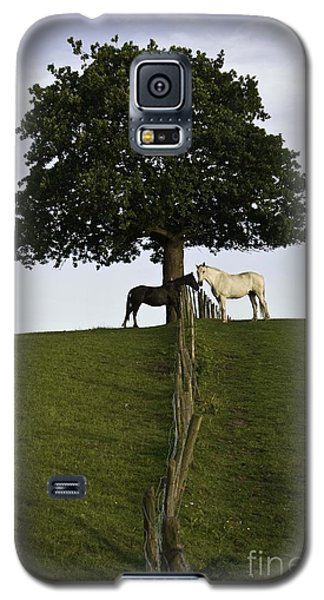 Horse Whisperers   Galaxy S5 Case