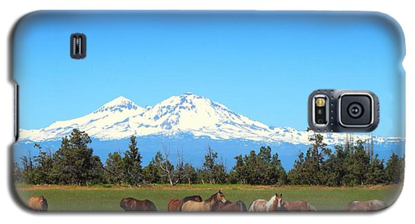 Horses At Sisters Mountain Galaxy S5 Case by Lynn Hopwood