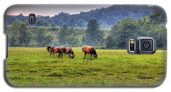 Horses In A Field 2 Galaxy S5 Case by Jonny D