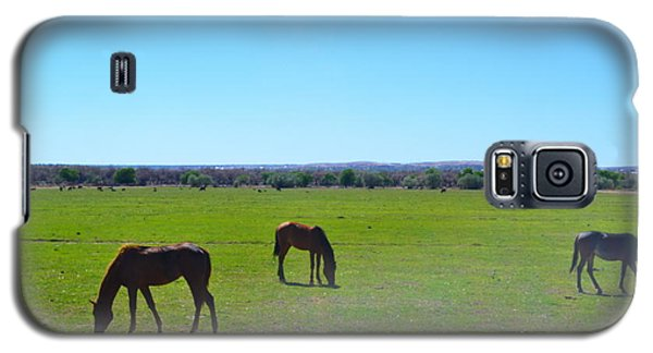 Horses In New Mexico Galaxy S5 Case
