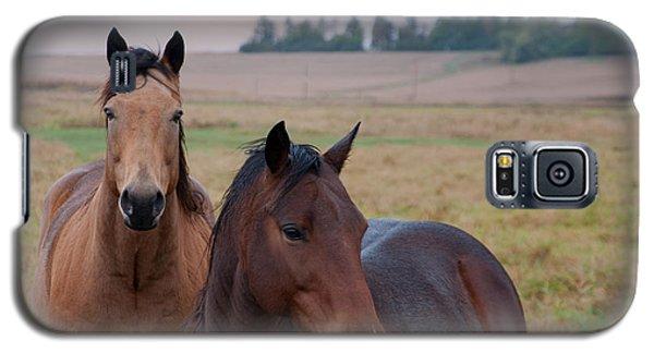 Horses In Rural Northwest Iowa  Galaxy S5 Case