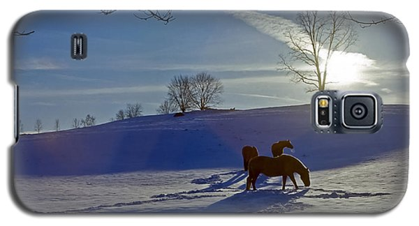Horses In Snow Galaxy S5 Case