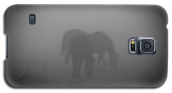 Horses In The Mist. Galaxy S5 Case by Cheryl Baxter
