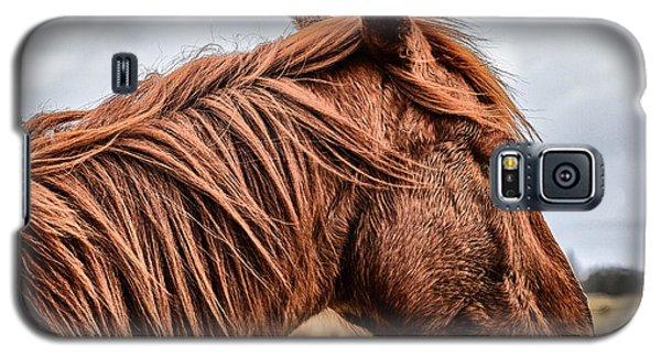 Horsey Horsey Galaxy S5 Case by John Farnan