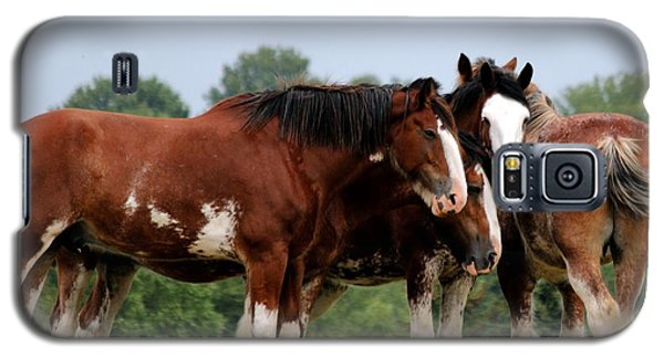 Horsie Huddle Galaxy S5 Case