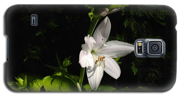 Galaxy S5 Case featuring the photograph Hosta  by Alan Lakin