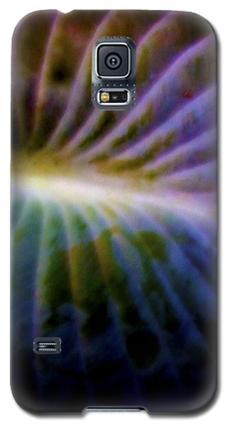 Hosta Leaf Galaxy S5 Case