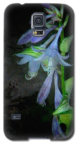 Hostacluster Galaxy S5 Case