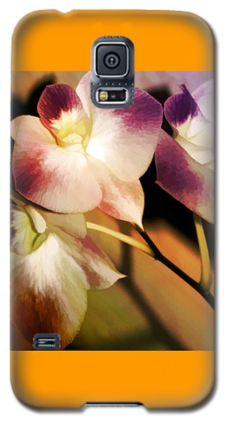 Galaxy S5 Case featuring the photograph Hot Orchid Nights by Holly Kempe