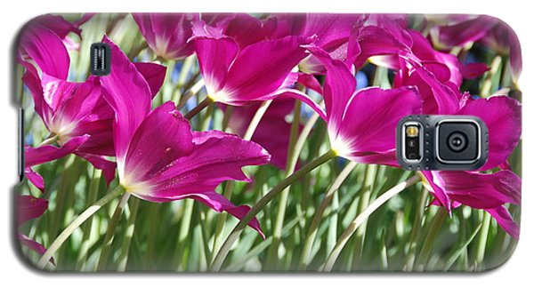 Galaxy S5 Case featuring the photograph Hot Pink Tulips 2 by Allen Beatty