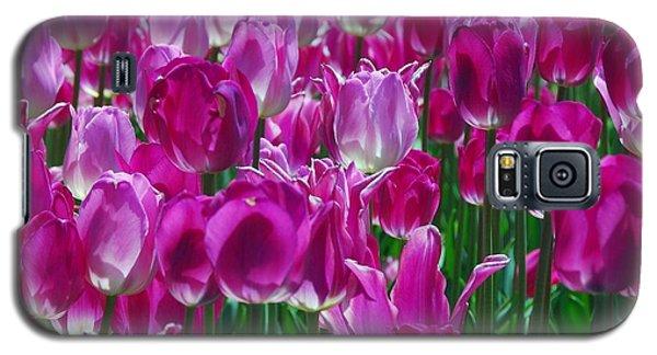 Hot Pink Tulips 3 Galaxy S5 Case by Allen Beatty
