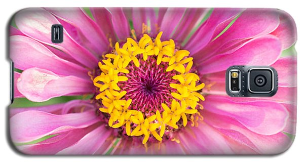 Hot Pink Zinnia Galaxy S5 Case