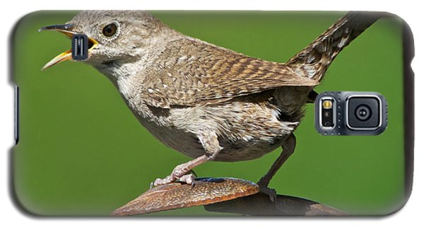 Galaxy S5 Case featuring the photograph House Wren Chirping  by Stephen  Johnson