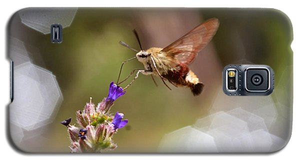 Hovering Pollination Galaxy S5 Case