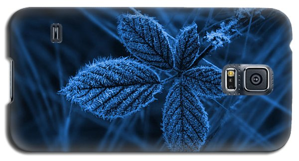 Galaxy S5 Case featuring the photograph How Cold by Keith Hawley